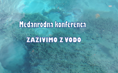 Mednarodna konferenca
