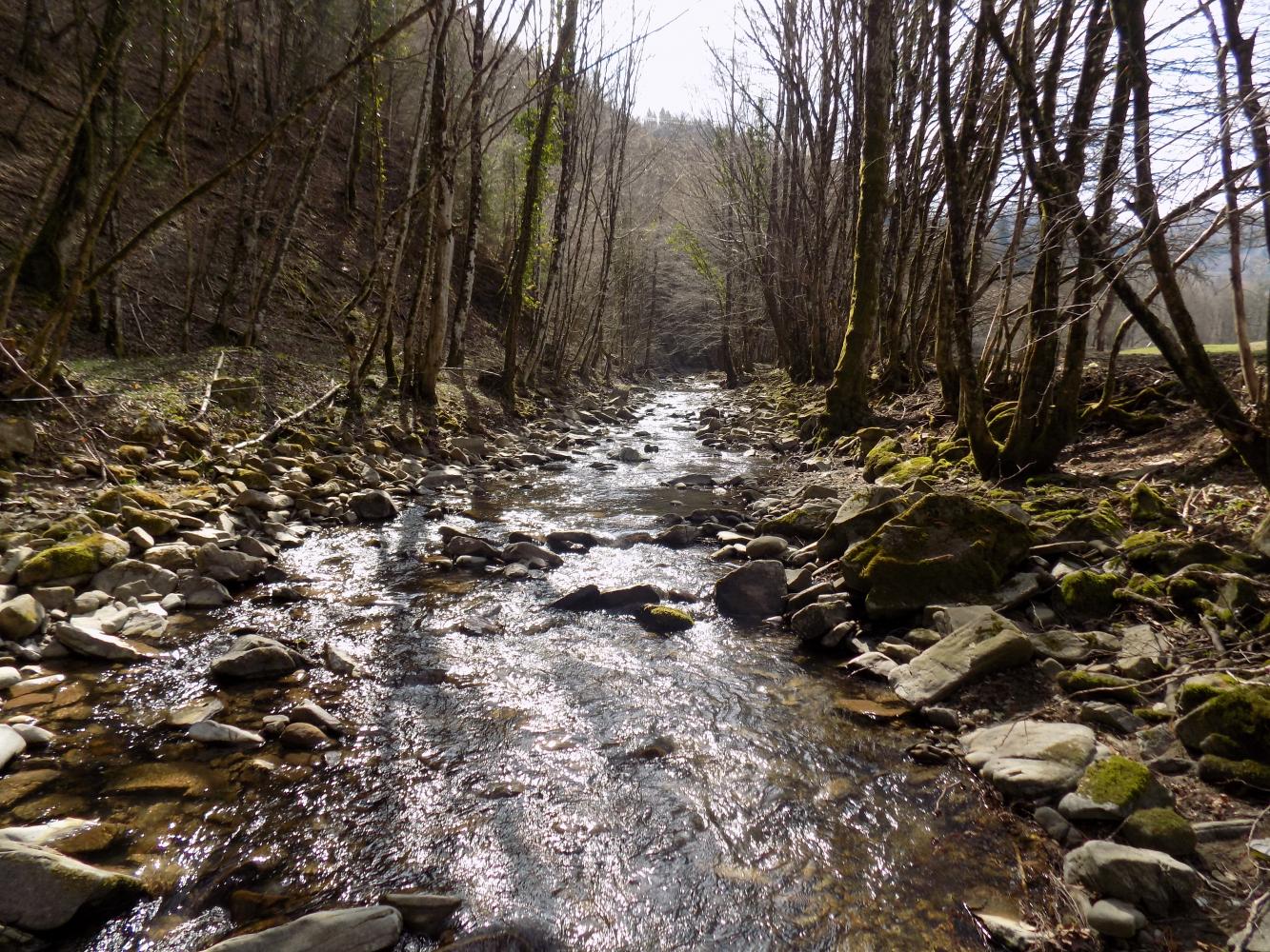 potok-padez-v-brkinih-je-oblikoval-globoko-dolino