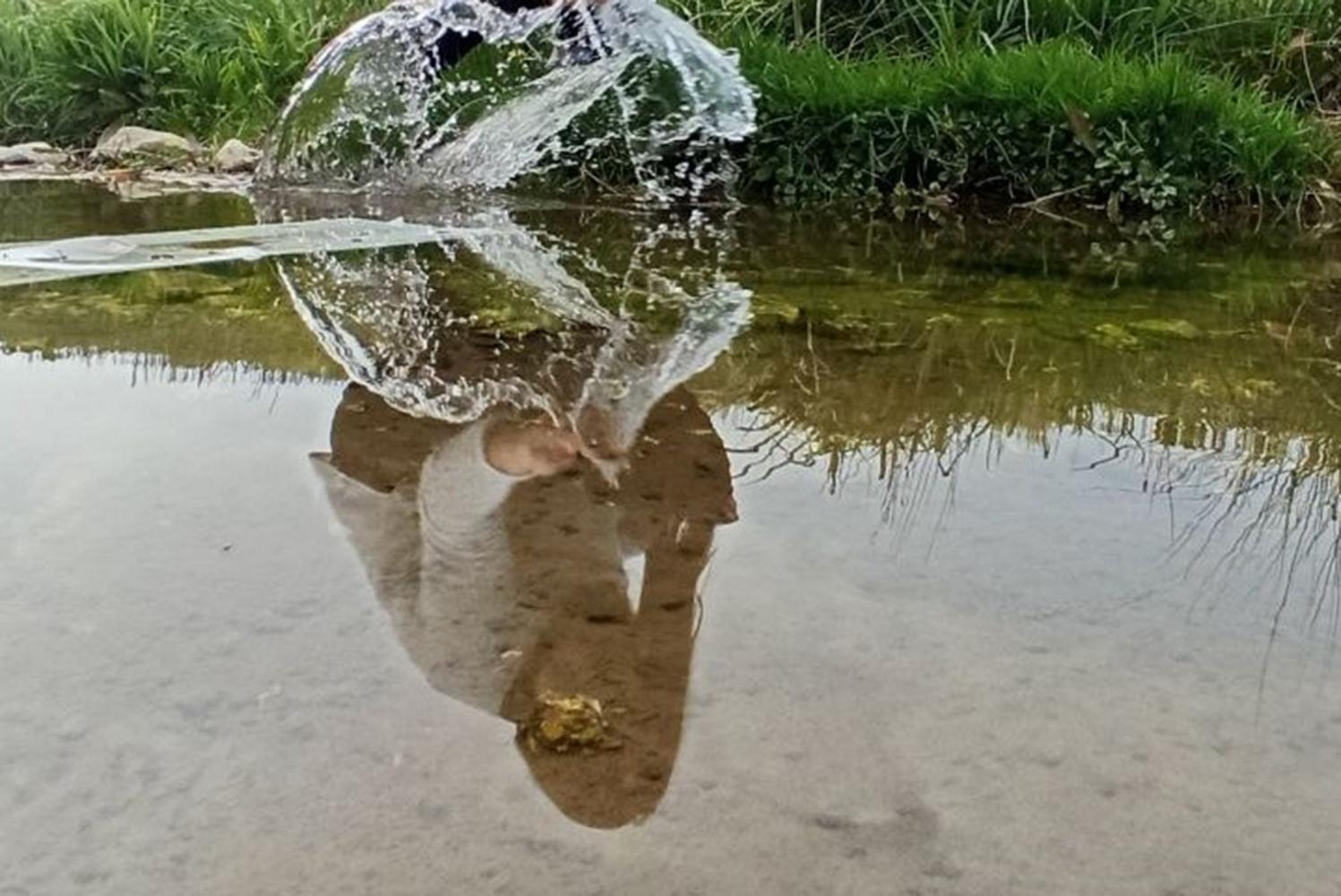vrednosti-vode-ne-poznamo-dokler-se-vodnjak-ne-posusi