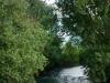 brodina-z-vipavo-z-mostu-brod-brodina-v-smeri-struga_1426-450x800_0