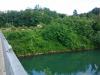 utrjene-brezine-na-levem-bregu-mostu-v-dragi_1407-800x450