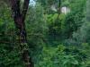 vipava-ob-barkoli_1387-450x800